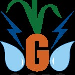 GGRC Ltd Recruitment For Assistant Consultant Posts 2019